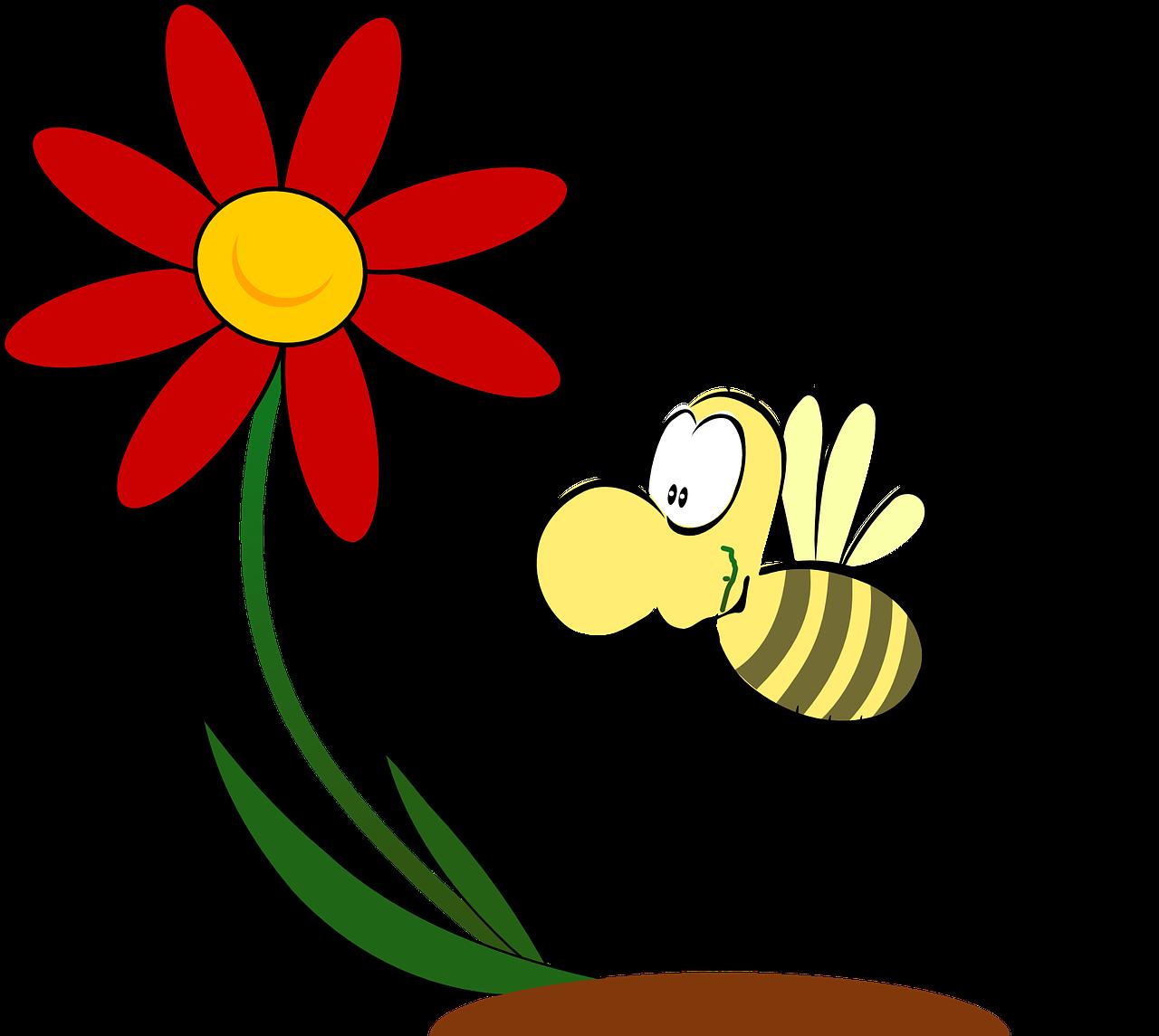 Hier geht es zu den Bienen